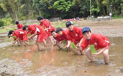 田植えの体験学習